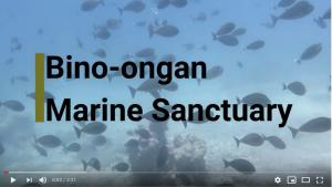 Binoongan Marine Sanctuary