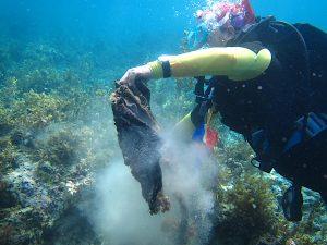 World Environmental Health Day Cleanup at Cordova, Cebu.